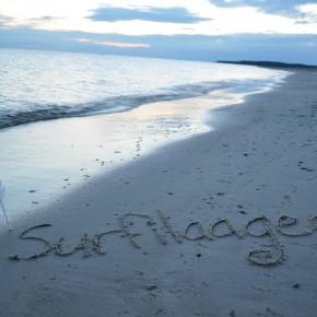 Battery Surfilaager 2012 korraldaja: publik on roheliselt korraldatud festivalideks valmis!